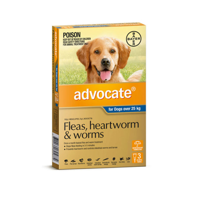 Advocate Blue Spot-On for Very Large Dogs - 3 Pack 1