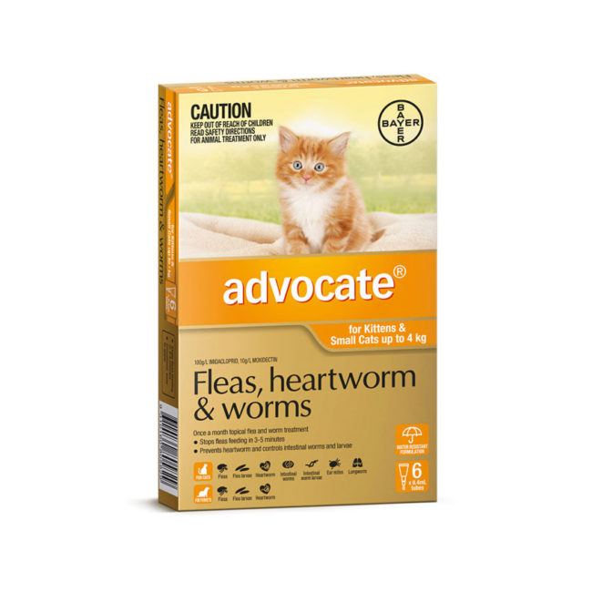 Advocate Orange Spot-On for Kittens & Small Cats - 6 Pack 1