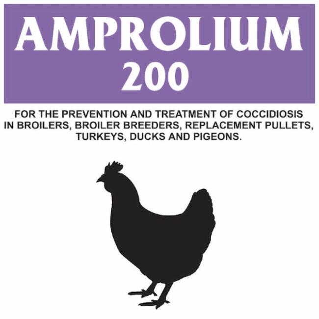 Allfarm Amprolium 200 Powder 100g 1