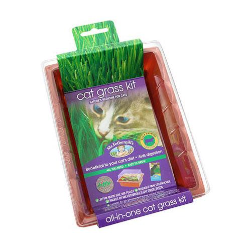 Mr. Fothergill's Cat Grass Seed Raiser Kit 1