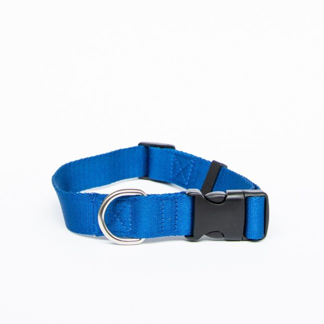 AniPal Dog Collar Pacific Ocean Medium 1