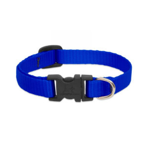 Lupine Blue Small Dog Collar 8-12""