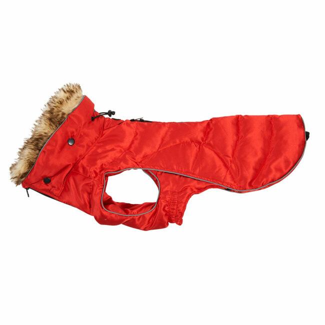 BUSTER Active Winter Dog Coat High Risk Red Medium/Large 1