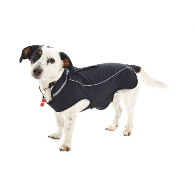 BUSTER Classic Softshell Dog Coat Blackberry Small 2