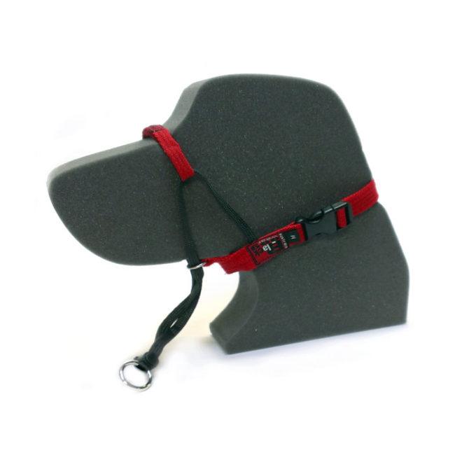 Black Dog Black Classic Training Halter - Small 2