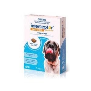 Interceptor Spectrum Blue Chews for Large Dogs - 6 Pack 1