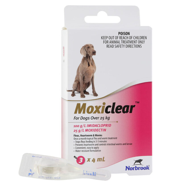 Moxiclear Pink for Large Dogs - 3 Pack 1