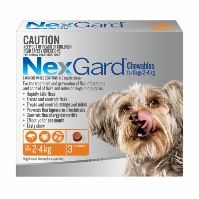 NexGard Orange Chews for Small Dogs (2-4kg) - 3 Pack 1