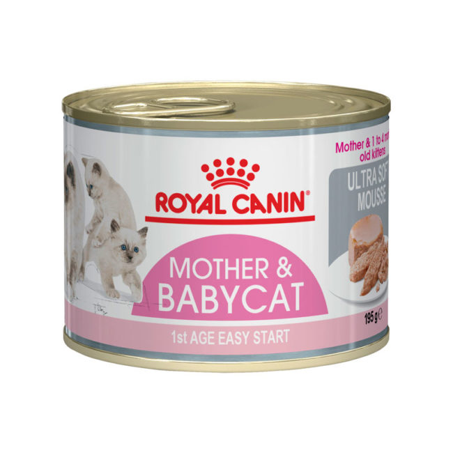 Royal Canin Mother and Babycat Starter Mousse 195g x 12 Cans 1