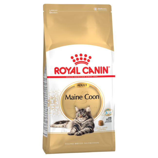 Royal Canin Feline Breed Nutrition Maine Coon Adult 10kg 1