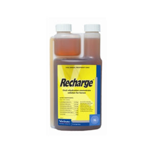 Recharge for Horses 1L