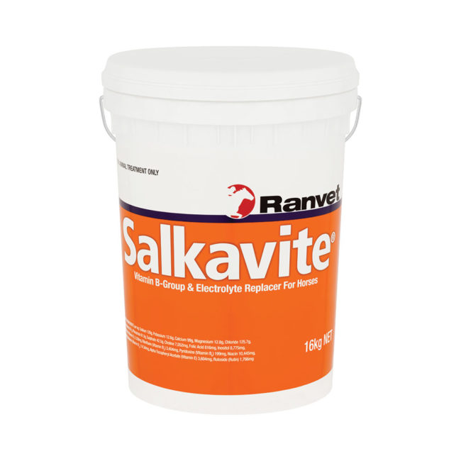 Salkavite Equine Electrolyte Supplement 16kg 1