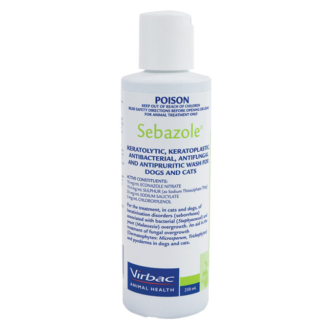 Sebazole Antibacterial Shampoo 250ml