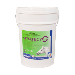 Strategy-T Stable Pail 35ml x 60 Syringes