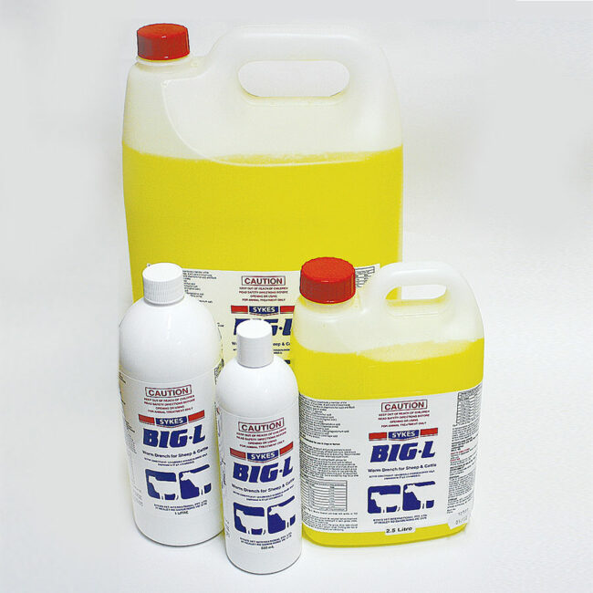 Sykes Big-L Wormer for Sheep and Cattle 500mL 1